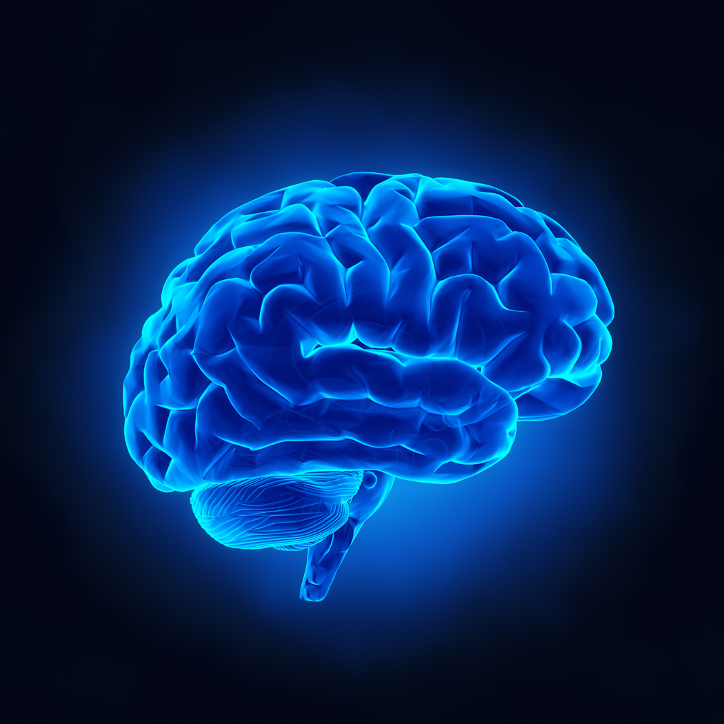 Neuro Rehabilitation | Altrincham Rehabilitation - (0161) 222 7897